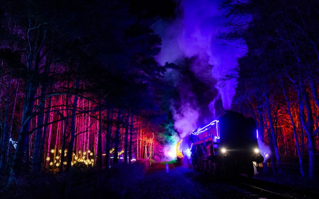 WSR announces new 'WINTERLIGHTS' experience